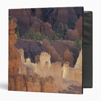 """Utah, parque nacional del barranco de Bryce. Carpeta 1 1/2"""""""