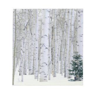 UTAH. USA. Aspen (Populus tremuloides) & Douglas Notepad