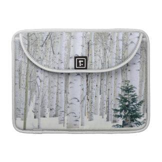 UTAH. USA. Aspen (Populus tremuloides) & Douglas Sleeve For MacBook Pro
