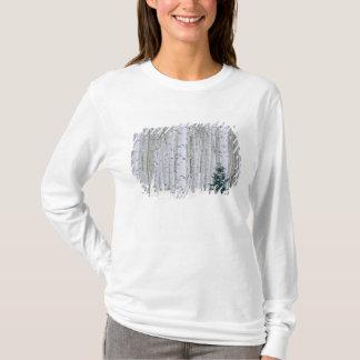 UTAH. USA. Aspen (Populus tremuloides) & Douglas T-Shirt