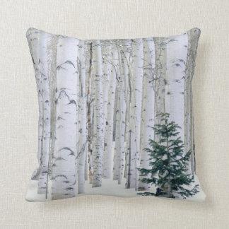 UTAH. USA. Aspen (Populus tremuloides) & Douglas Throw Pillow