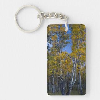 Utah. USA. Aspen Trees And Moon At Dusk Keychain