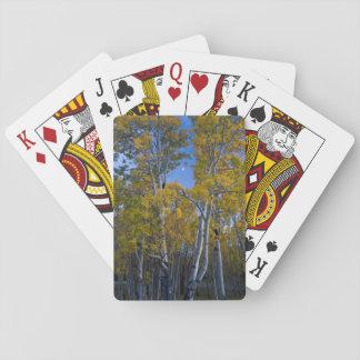 Utah. USA. Aspen Trees And Moon At Dusk Playing Cards