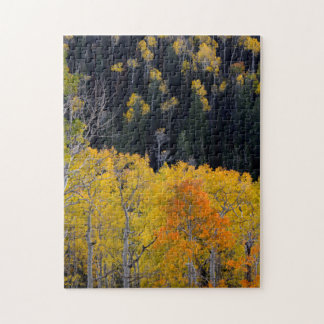 Utah. USA. Aspen Trees In Autumn On The Sevier Jigsaw Puzzle
