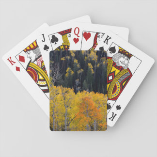 Utah. USA. Aspen Trees In Autumn On The Sevier Playing Cards