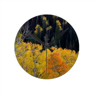 Utah. USA. Aspen Trees In Autumn On The Sevier Round Clock
