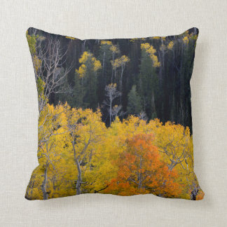 Utah. USA. Aspen Trees In Autumn On The Sevier Throw Pillow