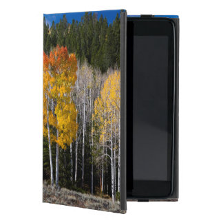 Utah, USA. Aspen Trees (Populus Tremuloides) 2 Cover For iPad Mini