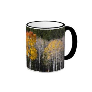 Utah, USA. Aspen Trees (Populus Tremuloides) 2 Ringer Mug