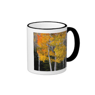 Utah, USA. Aspen Trees (Populus Tremuloides) 3 Ringer Mug