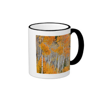 Utah, USA. Aspen Trees (Populus Tremuloides) 4 Ringer Mug