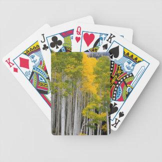 Utah. USA. Aspen Trees (Populus Tremuloides) Bicycle Playing Cards