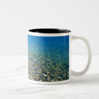 UTAH. USA. Clear water of Bear Lake reveals Two-Tone Coffee Mug