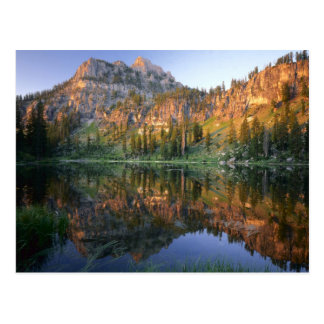 UTAH. USA. Mt. Magog reflected in White Pine Post Card