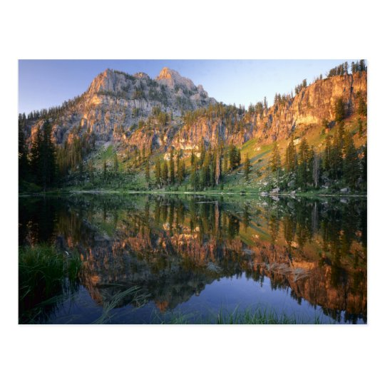 UTAH. USA. Mt. Magog reflected in White Pine Postcard