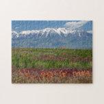 "Utah, USA. Mt. Timpanogos Rises Above Jigsaw Puzzle<br><div class=""desc"">Scott T. Smith / DanitaDelimont.com USA,  North America,  Utah</div>"