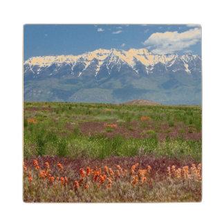 Utah, USA. Mt. Timpanogos Rises Above Wood Coaster