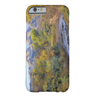 UTAH. USA. Pleasant Creek in autumn at sunrise. Barely There iPhone 6 Case