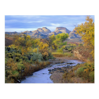 UTAH. USA. Pleasant Creek in autumn at sunrise. Postcard