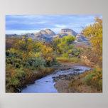 UTAH. USA. Pleasant Creek in autumn at sunrise. Poster