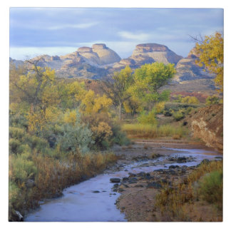 UTAH. USA. Pleasant Creek in autumn at sunrise. Tile