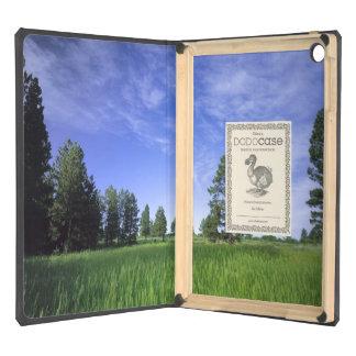UTAH. USA. Ponderosa pines Pinus ponderosa) & Case For iPad Air