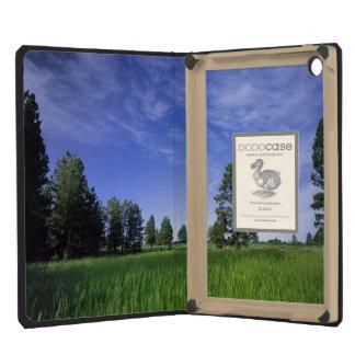 UTAH. USA. Ponderosa pines Pinus ponderosa) & iPad Mini Cases