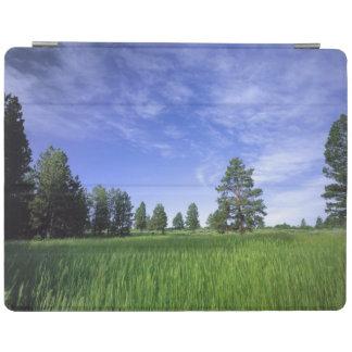 UTAH. USA. Ponderosa pines Pinus ponderosa) & iPad Smart Cover