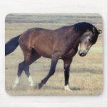 Utah Wild Mustang Mouse Mats