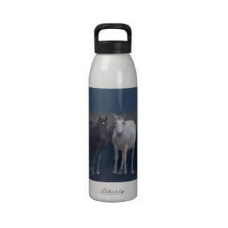 Utah Wild Mustangs Water Bottle