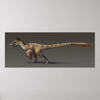 Utahraptor Impresiones