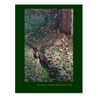Ute Canyon, Colorado National Monument Postcard