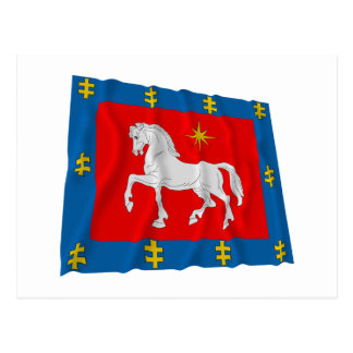 Utena County Waving Flag Postcard
