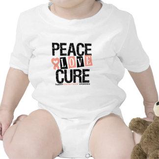 Uterine Cancer  Peace Love Cure Shirts