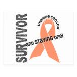Uterine Cancer Survivor 1 Postcards