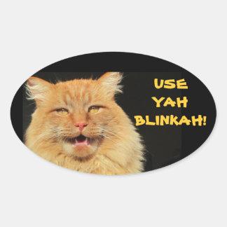 Utilice Yah Blinkah dice Boston Kittah Pegatina Ovalada