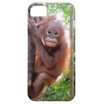 Uttuh Baby Orangutan in Jungle School iPhone SE/5/5s Case