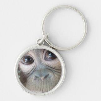 Uttuh orangutan keychain
