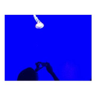UV Jellyfish Postcard
