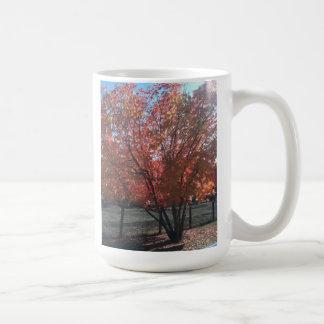 Uvas Canyon California Mug