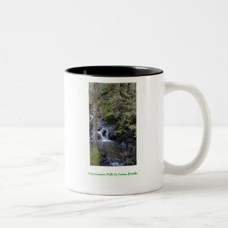 Uvas Canyon Falls Two-Tone Coffee Mug