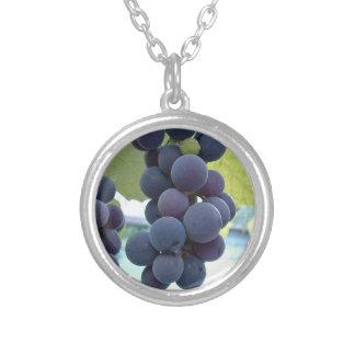 Uvas colgantes