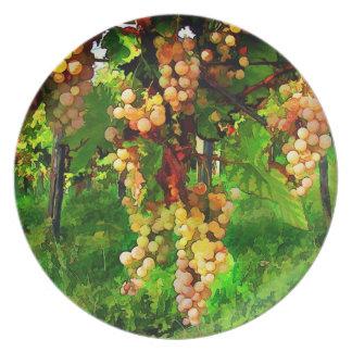 Uvas colgantes en las vides platos para fiestas