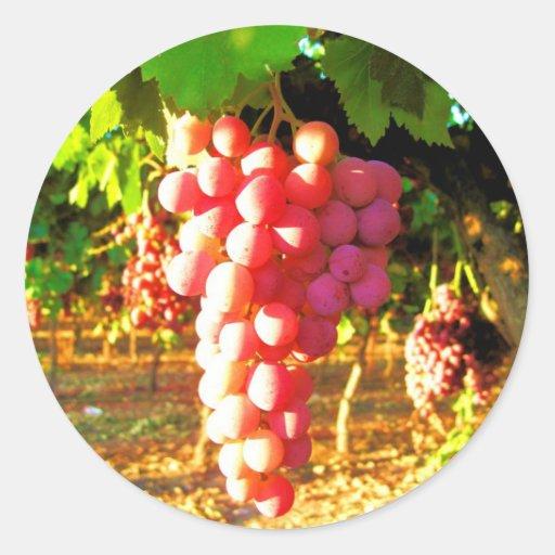 Uvas de California Pegatina Redonda