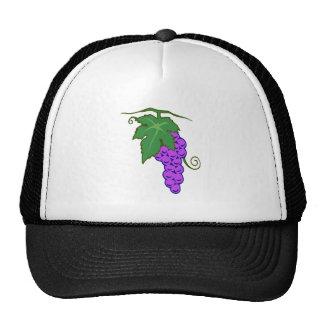 Uvas de grapes gorro de camionero