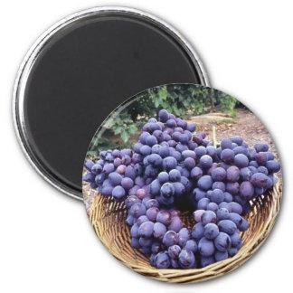 Uvas de la púrpura real imán redondo 5 cm
