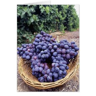 Uvas de la púrpura real tarjeta de felicitación