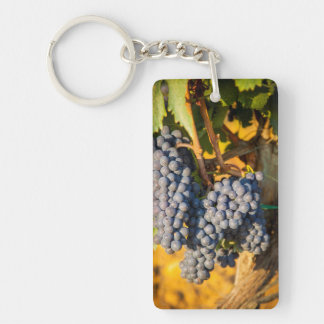 Uvas de Sangiovese en un viñedo Llavero Rectangular Acrílico A Doble Cara