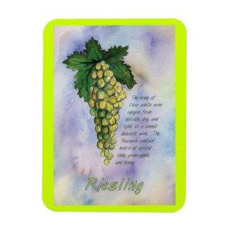 Uvas de vino de Riesling que pintan el imán del ar