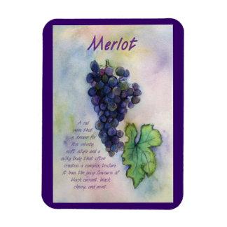 Uvas de vino del Merlot que pintan el imán del art